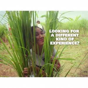 Farm Builds with Gawad Kalinga – Perspective of our French Volunteers